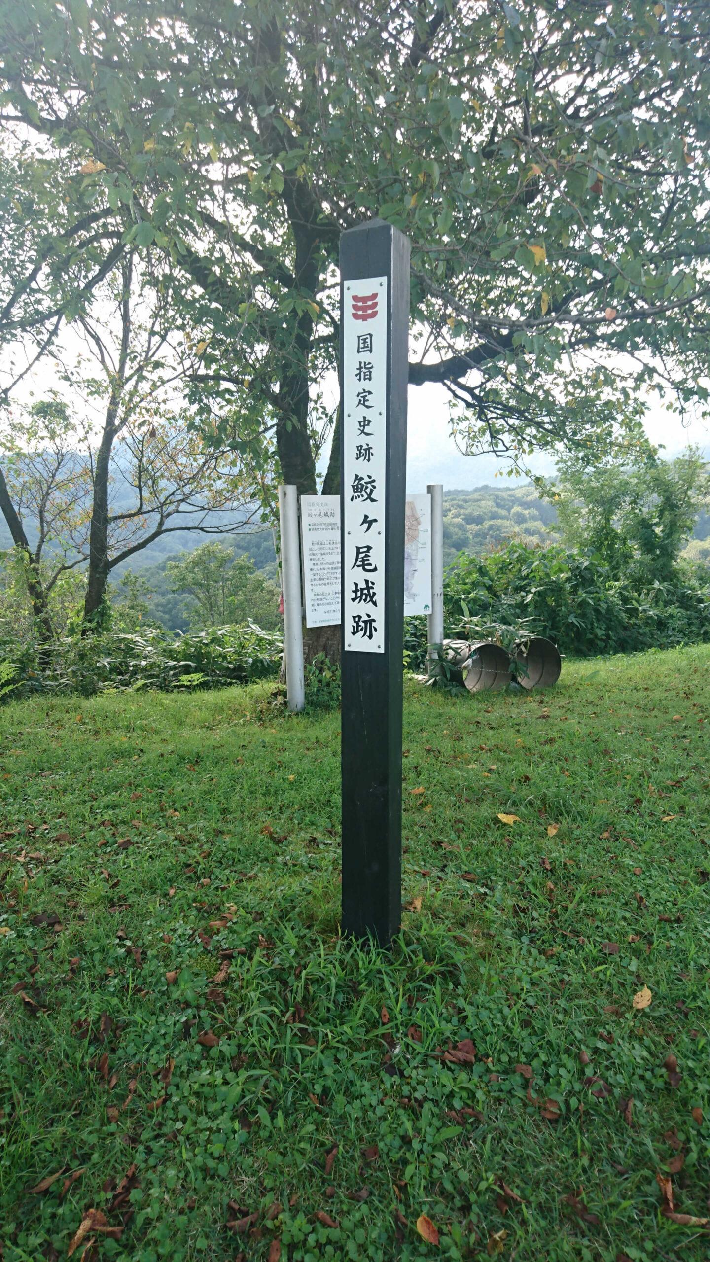 鮫々尾城跡 国指定史跡の杭
